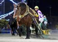ばんえい競馬の最多連勝記録を20年ぶりに更新したホクショウマサル(16日午後、北海道帯広市の帯広競馬場)=主催者提供・共同