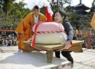 京都・醍醐寺の「餅上げ力奉納」に挑む女性参加者(23日午後)=共同