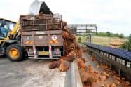 パーム油が主要輸出品のマレーシアにとって、中国の輸入拡大は助け舟となる=ロイター