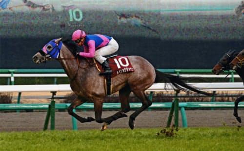 弥生賞は重馬場となり、8番人気のメイショウテンゲンが優勝=JRA提供