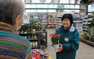 カインズ高森店の園芸コーナーで接客する池野末子さん(80)(長野県高森町)