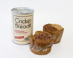 「大学シーズ研究所」が発売したコオロギの粉末を練り込んだパン=共同