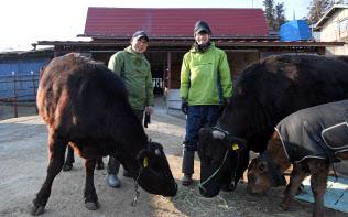 「牛?#26410;濉工?018年から牛舎の経営を始めた只野章さん(左)と信斗さん親子(3月2日、福島県飯舘村)