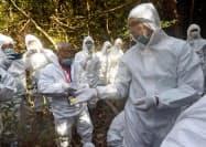 野生イノシシの豚コレラ感染を防止するワクチン入りの餌の使い方を説明する専門家(右手前)(15日午前、愛知県小牧市)=共同