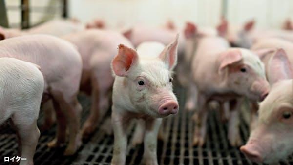 米農業、TPP離脱で対日輸出減 通商交渉に圧力