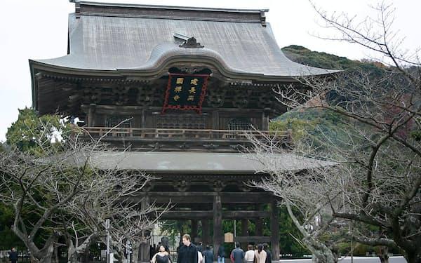 神奈川県鎌倉市。鎌倉幕府の本拠地の北東部をぐるりと回る約四キロの尾根道、天園(てんえん)は「鎌倉アルプス」と呼ばれ、年間を通じ手軽なハイキングコースとして親しまれている。