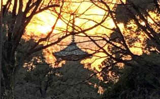 早春、上野公園の夕暮れ