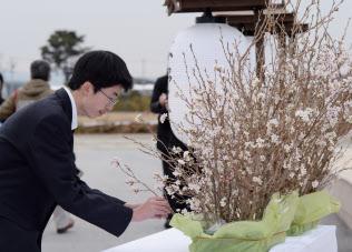 追悼行事で早く開花させ?#32340;@の花を供える宮城県農業高校の生徒(10日、宮城県岩沼市)