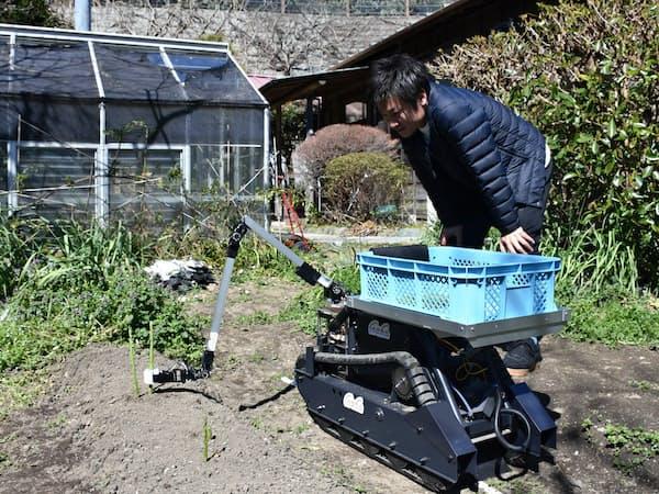 inahoのロボットはアスパラガスを自動で収穫する(鎌倉市の実験農場)