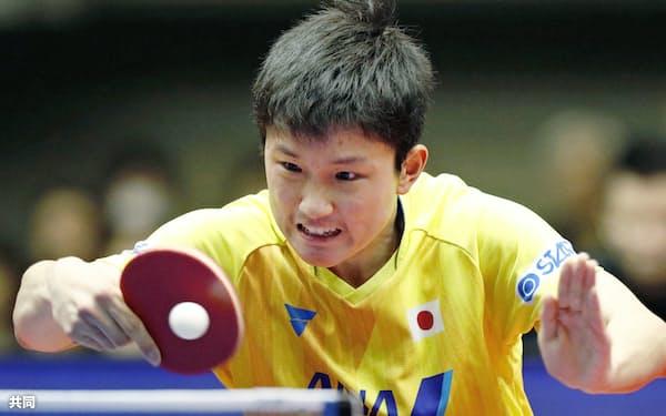 男子準決勝で中国選手と対戦する張本智和(6日、横浜文化体育館)=共同