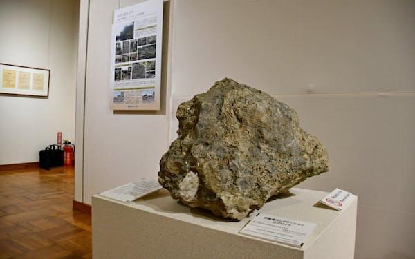 五浦海岸の景観をなす奇岩の展示も始めた