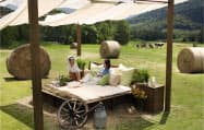 星野リゾート(長野県軽井沢町)が北海道の宿泊施設にオープンした農場「ファーム星野」。観光客は屋外のベッドでくつろげる