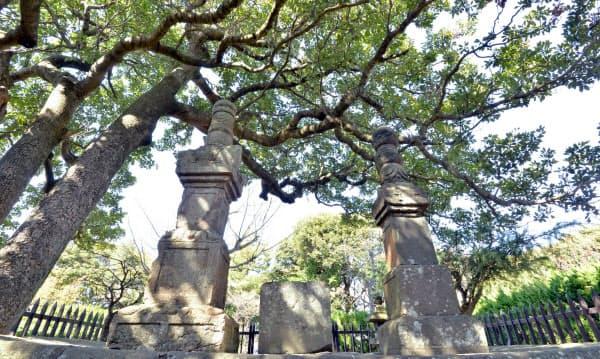 三浦按針と妻の墓は、遺言により江戸を望む高台に立つ