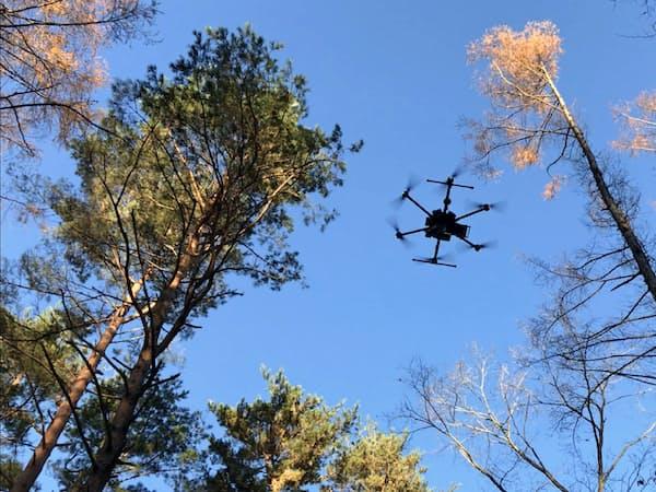 精密林業計測はドローンを飛ばして木の種類や本数を計測する