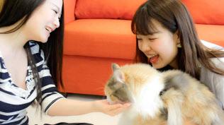 nyans(福岡市)のサービスでは仲を深める利用者が多い