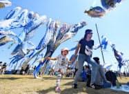 青空の中を泳ぐ約800匹の青いこいのぼりの下で遊ぶ親子(5日午後、宮城県東松島市)=共同