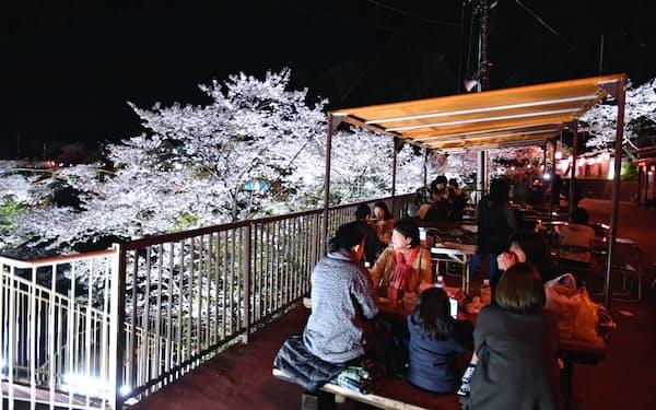 別府ラクテンチの夜桜イベントには約3万人が集まった(大分県別府市)