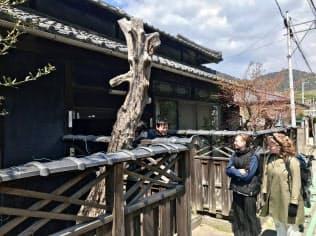 デンマークの学生2人を中心に空き家の改修を進める(2日、香川県丸亀市)