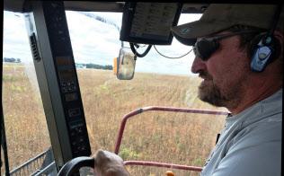 大豆価格の下げは経営悪化を招く(アイオワ州?#26410;?#35910;農家)