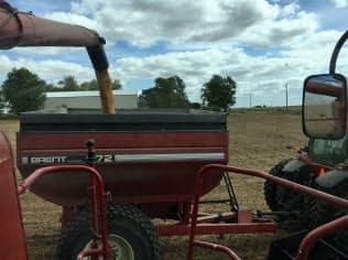 収穫期のアイオワ大豆農家