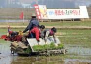 田植えをする北朝鮮の市民。「田植え戦闘場」などと書かれたスローガンが見える(5月、北朝鮮・南浦)=共同