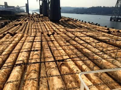 北米産丸太 再び下落 木造住宅の需要鈍く