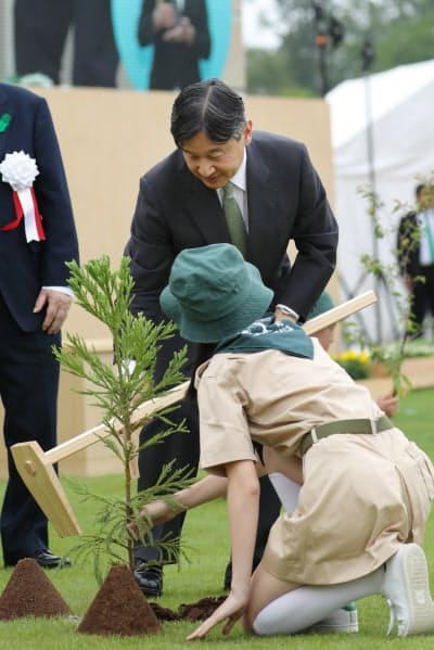 第70回全国植樹祭で苗木を植える天皇陛下(2日、愛知県尾張旭市の愛知県森林公園)=代表撮影