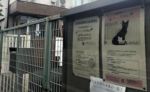 東京都の動物愛護相談センターには都民からの通報が相次ぐ(世田谷区)