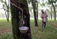 主産地の東南アジアではエルニーニョ現象の影響に伴う供給減に懸念も(写真はインドネシア)=ロイター
