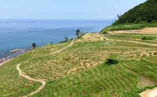 能登の里山里海の景観を象徴する(石川県輪島市)