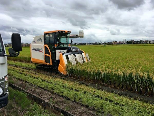 先物市場の必要性を主張する農家も出ているが……(新潟コシヒカリの収穫作業)