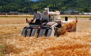 水田では、大麦や大豆を輪作する2年3作体系を強化する(福井市)