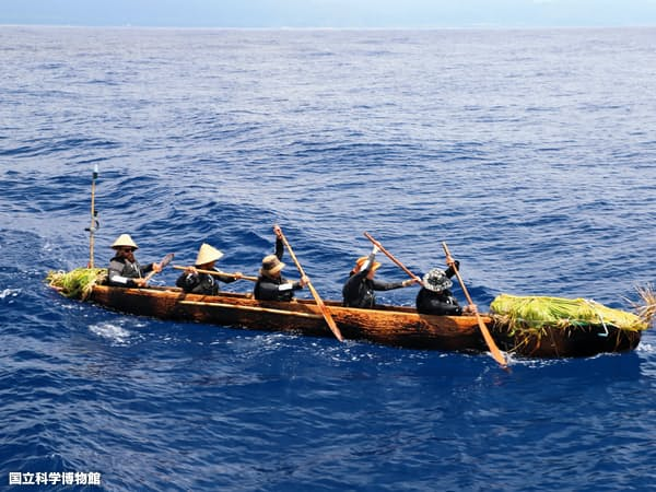 本番用の丸木舟を使った練習航海の様子。台湾にて実施。(国立科学博物館提供)