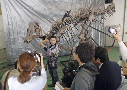 「むかわ竜」について新種の可能性が高いと説明する北海道大総合博物館の小林快次教授(18日、北海道むかわ町)=共同