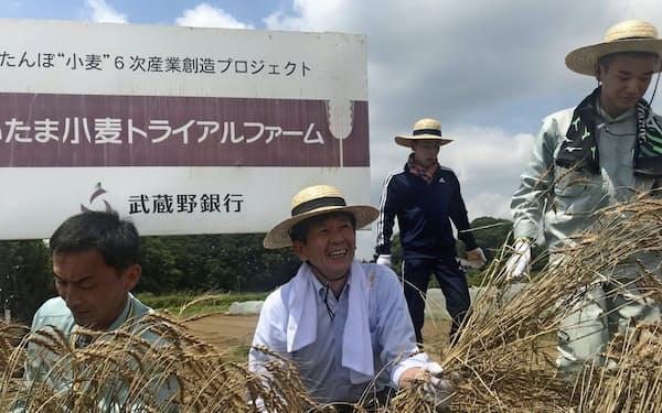 小麦を刈り取る武蔵野銀行の長堀専務(中央)
