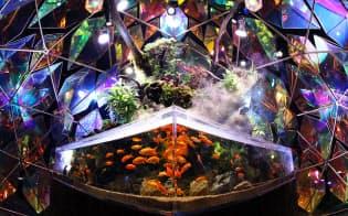 約40種類1000匹の金魚が舞う「金魚ミュージアム」(奈良市の複合商業施設「ミ・ナーラ」内)=小幡真帆撮影