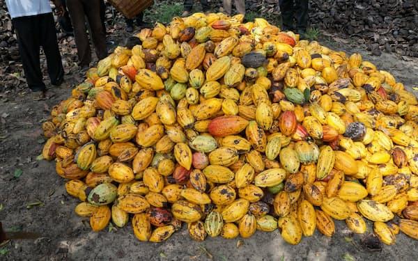 カカオ豆の国際会議で最低販売価格が打ち出された