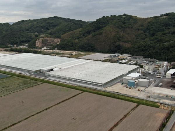 ガラスハウスの面積はアジア最大という(岡山県笠岡市)