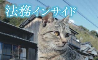 相島の猫は人懐こく、近づいても逃げない(福岡県新宮町)