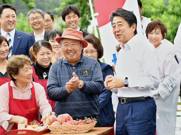第一声を前に果樹園で農家と交流する安倍首相(4日、福島市)