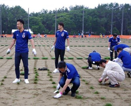サッカー日本代表の吉田麻也や酒井宏樹らも加わり、約300人がピッチ予定地に芝生の苗を植え込んだ(29日、千葉市)
