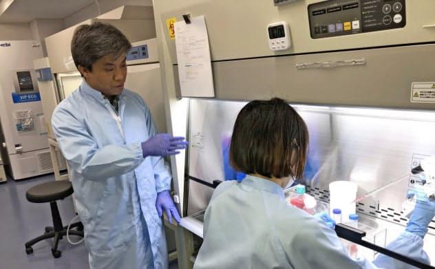 アセルナテクノロジーズは京大iPS研究所の技術を使った事業開発を目指す