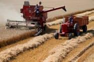 下方修正後も小麦の世界在庫は過去最高水準にある=ロイター