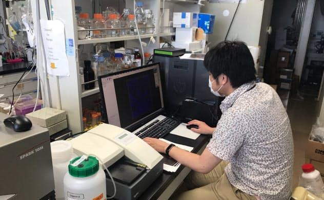 東京医科歯科大は遺伝子治療をした動物の脳を解析している