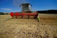 乾燥続きで欧州産やロシア産などに生産減観測が出ている=ロイター