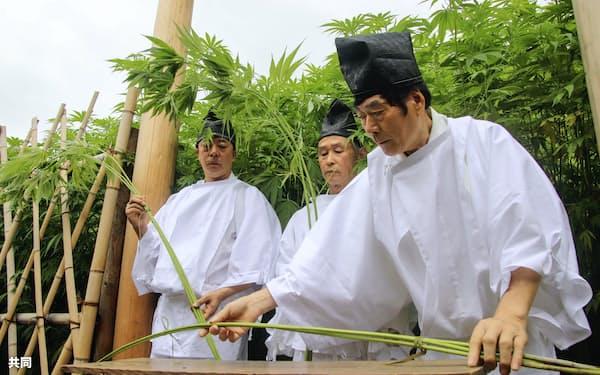 大麻を収穫する「抜麻式」(15日、徳島県美馬市木屋平)=共同