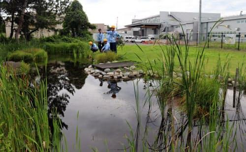 三菱電機の受配電システム製作所は生物多様性の保全活動に力を入れている(香川県丸亀市)