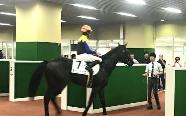 血統馬ラインベックもこの夏、初勝利を挙げた(中京競馬場)