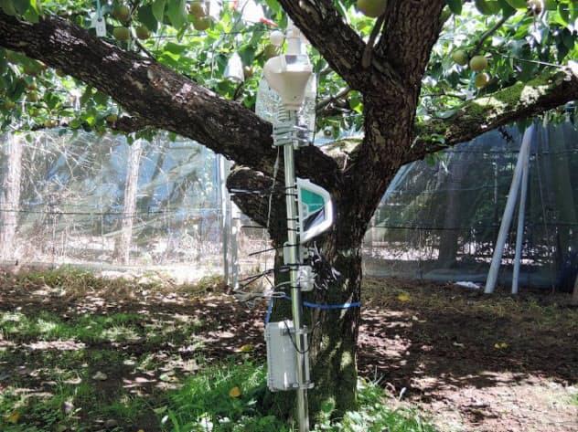 通信機能を持つセンサー。農場に設置して気温などを観測する(写真提供:千葉県農林総合研究センター)
