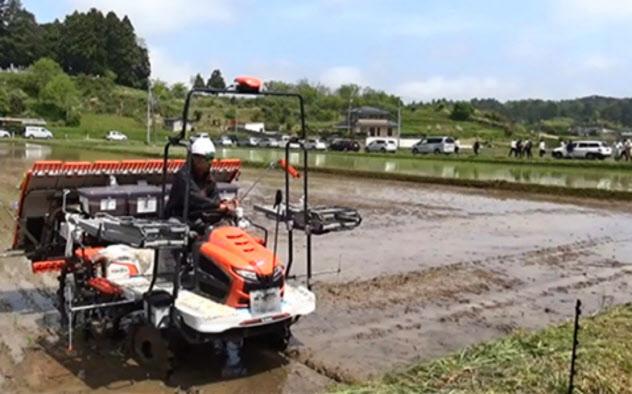 先端技術を駆使した田植えなど、実験で被災地の営農再開支援を目指す(南相馬市、5月)
